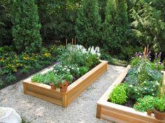 raised beds for vegie garden Garden Paving, Veg Garden, Garden Oasis, Edible Garden, Garden Path, Raised Garden Beds, Raised Beds, Garden Architecture, Backyard Retreat