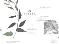 scribewinery.com