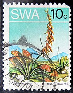 Stamp Collection Value, Himba People, Sept 1, Fauna, Natural Colors, Stamp Collecting, West Africa, Postage Stamps, Childhood Memories