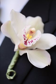 Orchid.   Style Me Pretty | Gallery