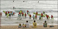 Manly Beach activities. Link to Bondi: http://travel.nytimes.com/2005/08/28/travel/28surface.html