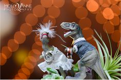The ragged wren : Dinosaur Wedding Toppers