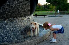 Photo de l'album DONBASS Travail 4 - GooglePhotos