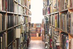 Você tem que conhecer: Sebo e Livraria Papirus