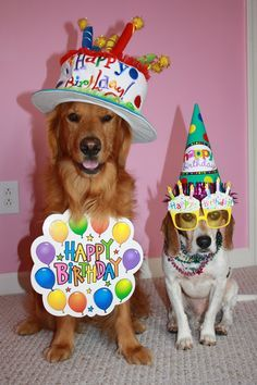 Dog lovers birthday