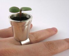 Everybody needs a potted plant on there finger...lol