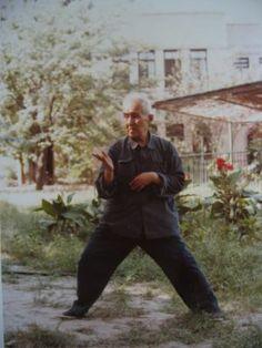 Grandmaster Hong Junsheng [Chen-style t'ai chi ch'uan (Taijiquan) Practical Method - Hong JunSheng - Chen Zhonghua]