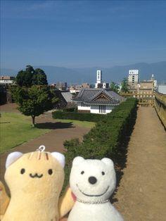 クマ散歩:舞鶴城公園に品行方正なクマ出没3 The Bear took a walk around Maizuru Castle Park Pt.3!♪☆(^O^)/  #舞鶴城#クマ出没#品行方正
