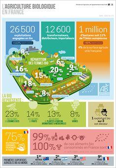 infographie agriculture bio en France