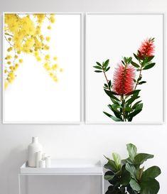 The Wattle Print celebrates the beauty of Australia's native flora. Flower Wall, Flower Prints, Australian Home Decor, Le Mimosa, Australian Native Flowers, Scandinavian Art, Living Room Art, Botanical Prints, Watercolor Illustration