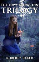 Towy Bridge Inn: Trilogy, an ebook by Robert Baker at Smashwords