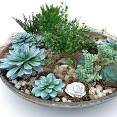 Cómo hacer una composición de cactus y plantas crasas # Las suculentas son las plantas perfectas para crear espectaculares composiciones con las cuales decorar la terraza, un patio interior con mucha luz o el patio. Quedan de maravilla como centro de mesa, y apenas requieren ... »