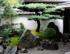 japan garden A pine in the corner. The gravel stream 'flows' under the elevated path to the right. Daisen-in, a subtemple of Daitoku-ji, was founded in 1509 by Zen priest Kogaku Soko Small Japanese Garden, Japanese Garden Design, Japanese Garden Backyard, Japanese Gardens, Zen Garden Design, Landscape Design, Small Water Features, Plantas Bonsai, Japan Garden