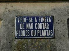 Fineza