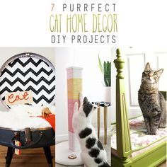 You are going to love these 7 Purrfect Home Decor Cat DY Projects! There is one that is picture perfect for your kitty cat! MEOW!
