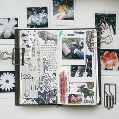 A walk in the garden #fujifilmmy #instaxclub #lollalane #midori #midoritravelersnotebook #travelersnotebook #travelersnotebookmalaysia #journaling #journal #文具 #手帐