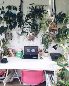 See this Instagram photo by @urbanjungleblog • 4,747 likes