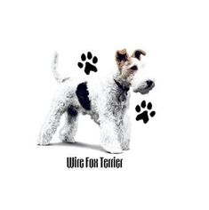 Wire Fox Terrier Floral Dog T SHIRT, ( Sweatshirt, Quilt Fabric Block, Tote Bag, Apron, Available On Request) #916b by AlwaysInStitchesCo on Etsy