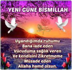 Cami Hizmet Evi ((( CHE ))): ..23 Haziran  2015 SALI::::Ehlen ve Sehlen Ya ŞEHR...