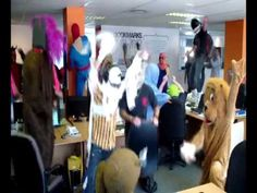 Best Harlem Shake Video Ever! Harlem Shake, Bobs, Videos, Youtube, Animals, Animales, Animaux, Animal, Animais