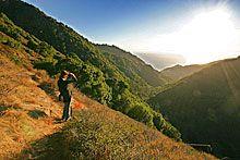 .:. Hiking in Big Sur - Salmon Creek Trail .:.