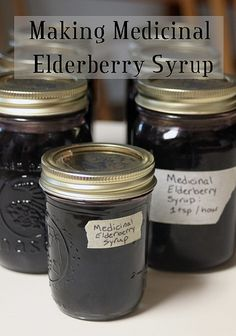 Making Medicinal Elderberry Syrup