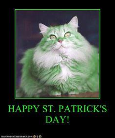 HAPPY ST. PATRICK'S DAY! *