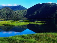 5 Things You Need to Know about Visiting New Zealand | Fascinating Places To Travel