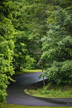 roads in the west virginia mountains | Road Bluestone State Park West Virginia Photograph - Winding Road ...