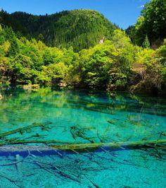 La Vallée chinoise de Jiuzhaigou dévoile un décor naturel totalement sublime