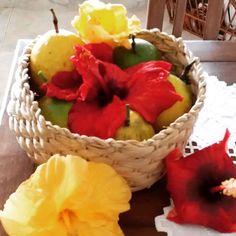Do quintal! #hibiscos #maracuja #organico #healthyliving #organics #passionfruit #lifestyle #riointerior #BalaiodeEstiloS