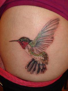 Hummingbird by jose almodovar