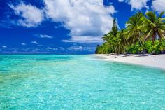 Amazing beach with white sand and palm trees, Rarotonga, Cook Is by mvaligursky on PhotoDune. Amazing beach with white sand and palm trees on Rarotonga, Cook Islands Honeymoon Essentials, Honeymoon Destinations, Seaside Resort, Turquoise Water, White Sand Beach, Cook Islands, Tropical Paradise, Beach Fun, Beautiful Islands