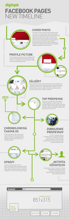 Useful Timeline infographic