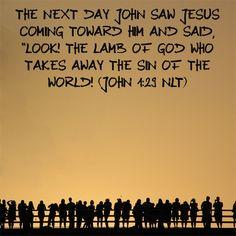 Knowing Him by name reading plan day 11/25!!! Bible Verse: John 1:29