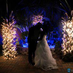 Galveston Island Palms Outdoor Events & Parties Ceremony area at night! Galveston Island, Outdoor Events, Palms, Reception, Parties, Sign, Beach, Wedding, Fiestas