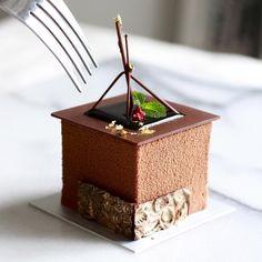 Feb 20 2017. Hong Kong. Chocolate Sponge Cake.