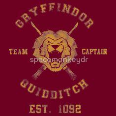 Gryffindor Team Captain- Harry Potter Quidditch