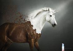 Febreze - Unicorn on Behance