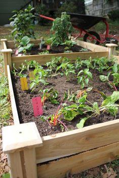 Raised Bed Hero ~awesome DIY raised bed garden tutorial