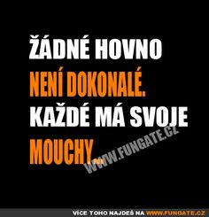 Žádné hovno není dokonalé Black Jokes, Digital Marketing Trends, Funny Texts, The Funny, Haha, Entertaining, Motto, Words, Memes