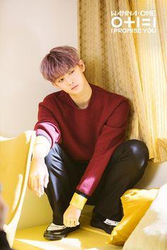 """[BY Wanna One 워너원] 워너블 여러분 안녕하세요! 3월 19일, 우리 워너원이 드디어 두 번째 미니앨범 """"..."""