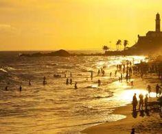 Praia do Forte - Salvador - Brasil