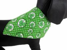 St. Patrick's Day Dog Bandana :) http://www.amazon.com/gp/product/B00BR9YB26/ref=as_li_ss_tl?ie=UTF8&camp=1789&creative=390957&creativeASIN=B00BR9YB26&linkCode=as2&tag=daibox-20