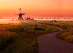 Travel In Holland || unique recreation accommodations