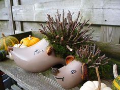 keus klompen - afgekeurde klompen ideaal voor workshops en feestjes - Lilly is Love Nature Crafts, Fall Crafts, Diy And Crafts, Crafts For Kids, Arts And Crafts, Winter Springs, Fall Diy, Fall Halloween, Hedgehog