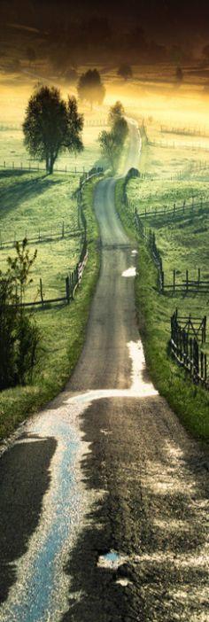 take a road less traveled