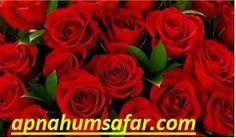 https://flic.kr/p/SmfPxn | ah1 | best matrimony services in punjab.
