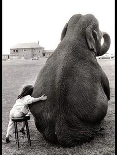 Voor een knuffel ben je nooit te groot #kids #kinderen