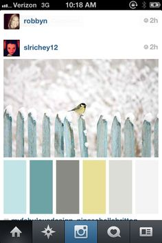 Color palette for my next home